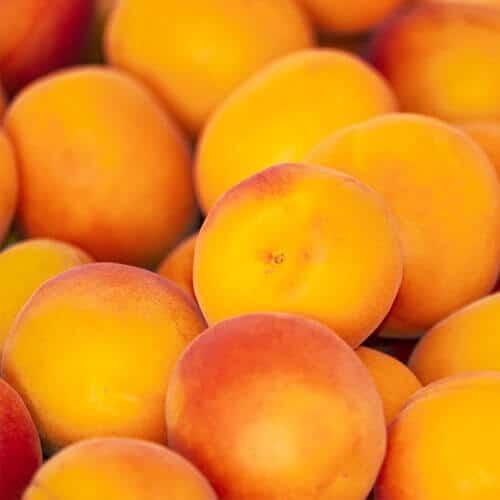 Key Vape Apricot Concentrate