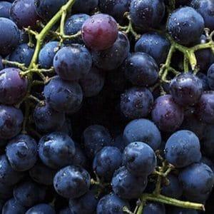 Key Vape Grape Concentrate