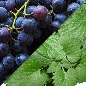 Key Vape Grape Mint Concentrate
